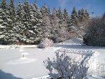 Schnee Update
